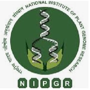 nipgr recruitment 2020 notification